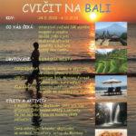 Cvičení na Bali 2018
